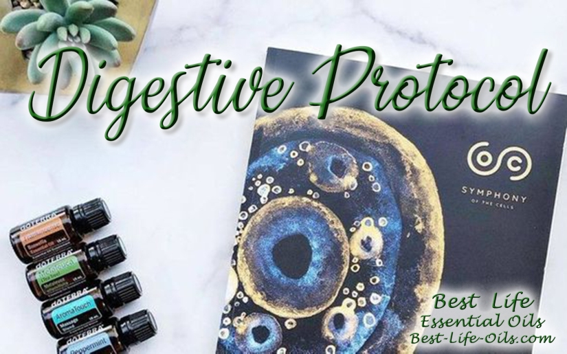 Digestive Symphony of the Cells Protocol