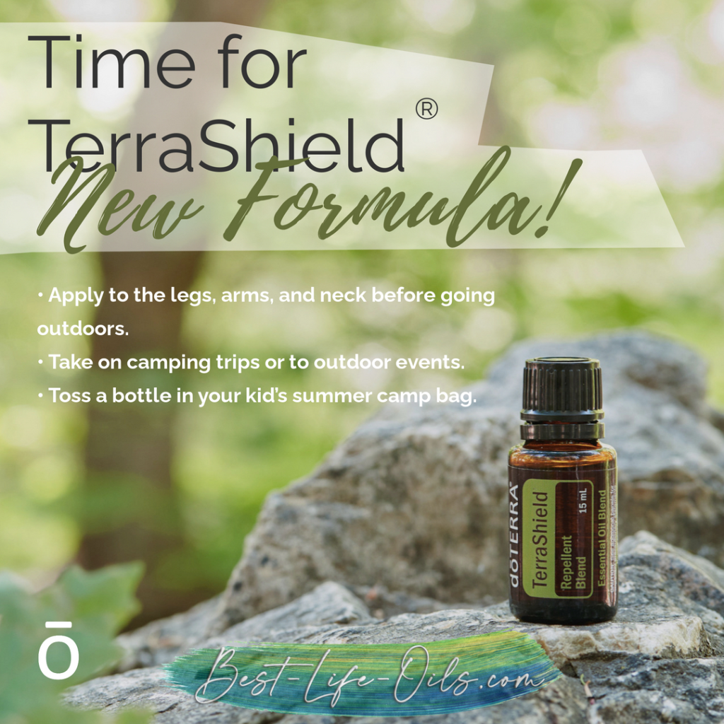 This image has an empty alt attribute; its file name is terrashield.png